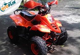 BeeHappy Bravo 110cc