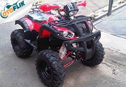 BeeHappy Bull 150cc