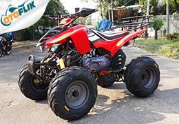 BeeHappy Spider 150cc