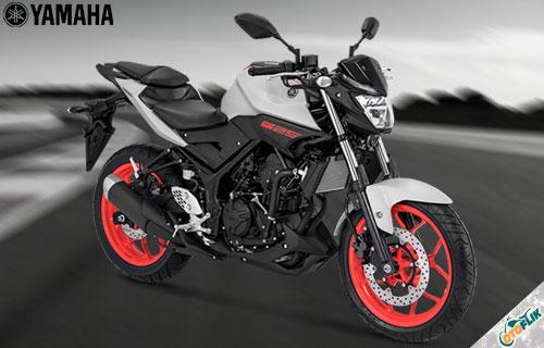 Yamaha MT-25