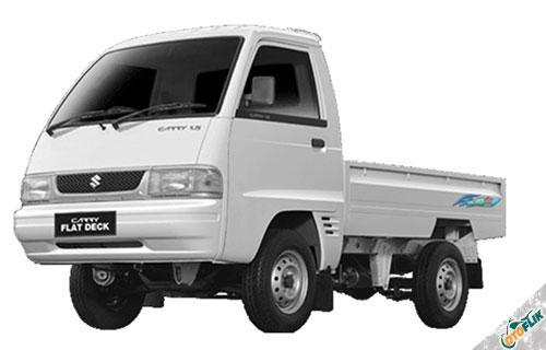 Suzuki Carry Pick Up FD Futura