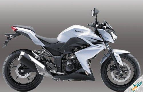 Kawasaki Ninja Z 250 2013