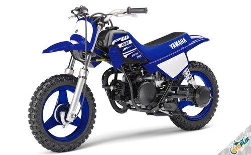 Yamaha PW50 2018