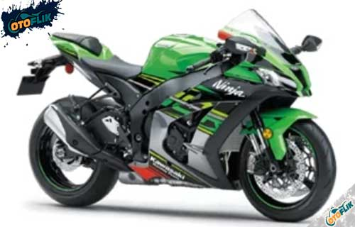 Kawasaki ZX-10R Metallic Graphic Gray