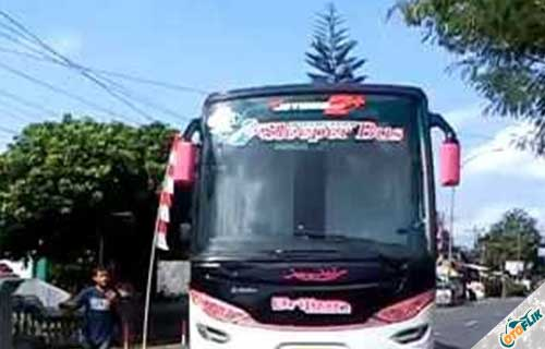 Sleeper Bus dari PO. Brilian
