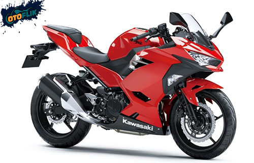 All New Kawasaki Ninja 250