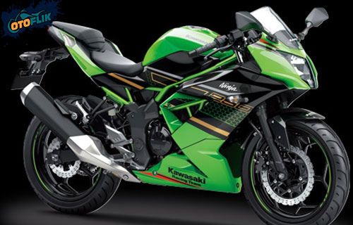 Kawasaki Ninja 250SL KRT Edition