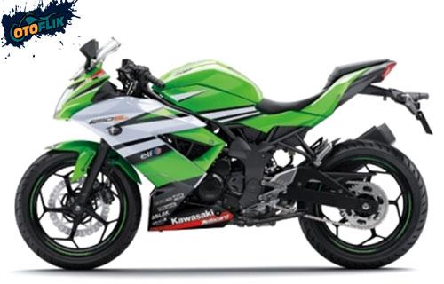Kawasaki Ninja RR Mono 250CC 2015 Bekas