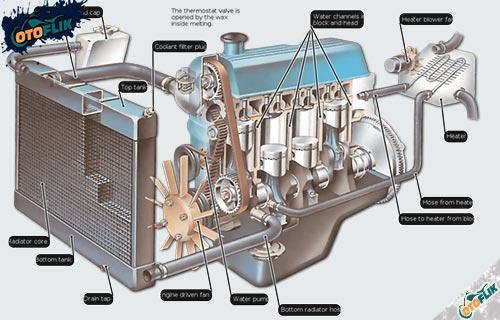Komponen Radiator Mobil Beserta Fungsinya