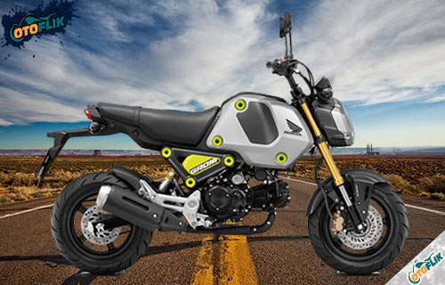 Honda MSX 125 Grom Force Silver Metallic