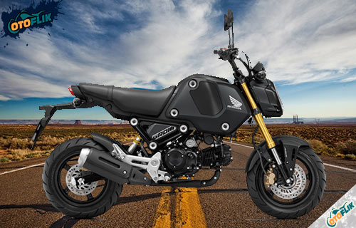 Honda MSX 125 Grom Mat Gunpowder Black Metallic