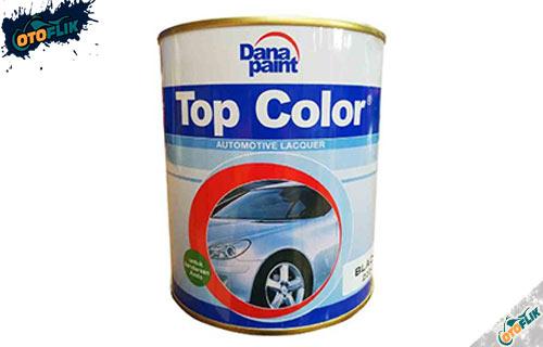 Danapaint Top Color