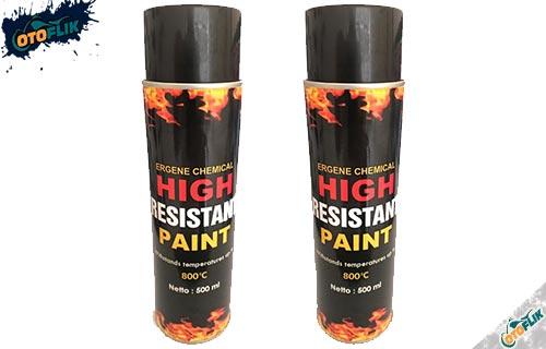 Ergene High Resistant Paint